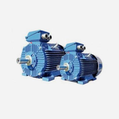 Motori Elettrici